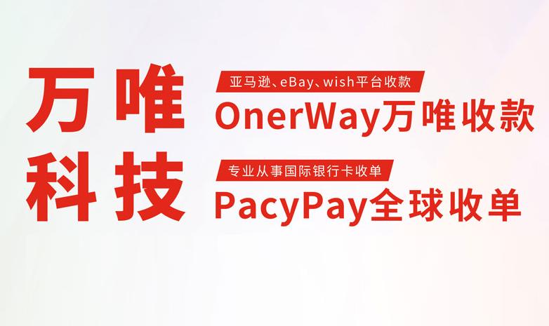 万唯携PacyPay收单产品惊艳亮相湖北跨境电商行业峰会